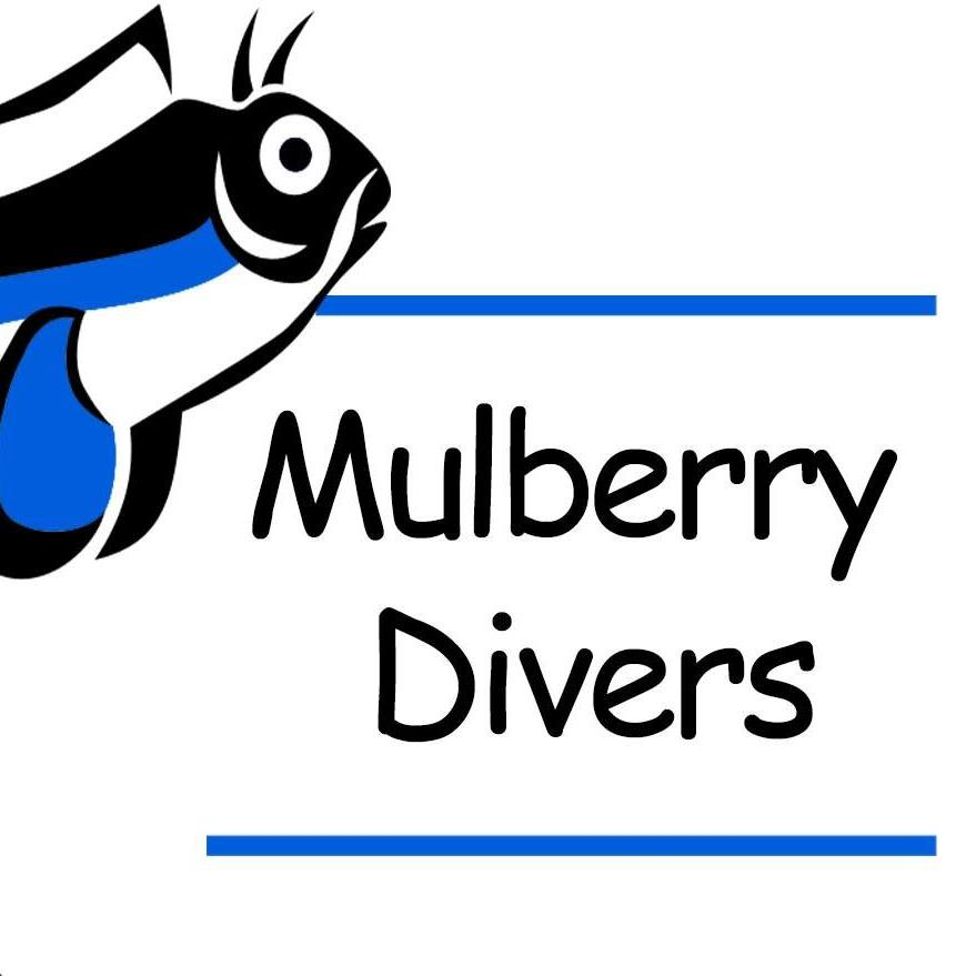 Mulberry Divers